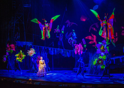 Tarzan, Lyric Theatre, Lyric Theatre of Oklahoma, Costume Rentals, Costumes, Rental